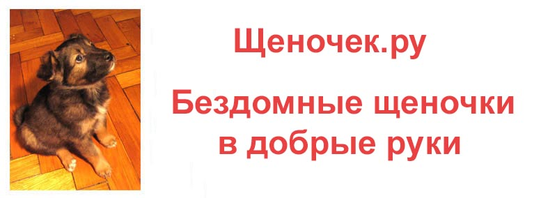 Milleon@yandex ru
